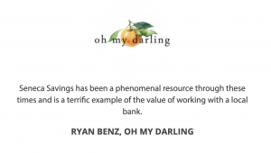 ryan benz oh my darling testimonial for seneca savings bank